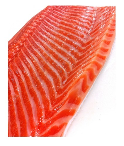 Steelhead (Salmon Trout)