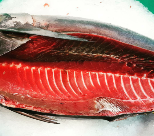 Tuna: Yellowfin